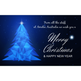 Christmas Wishes & Holiday Closure Dates 2020/21